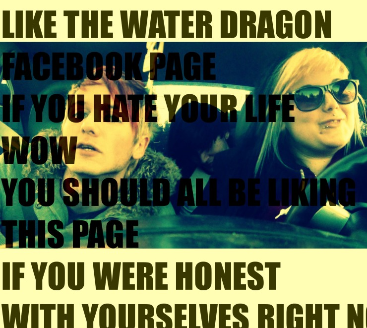 like the water dragon facebook page